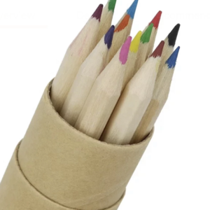Recycled Paper Tube of Coloured Pencils
